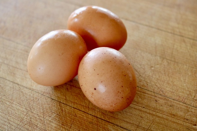 three-speckled-eggs